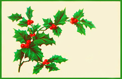 s-New-year-card-template-holy-red-berries