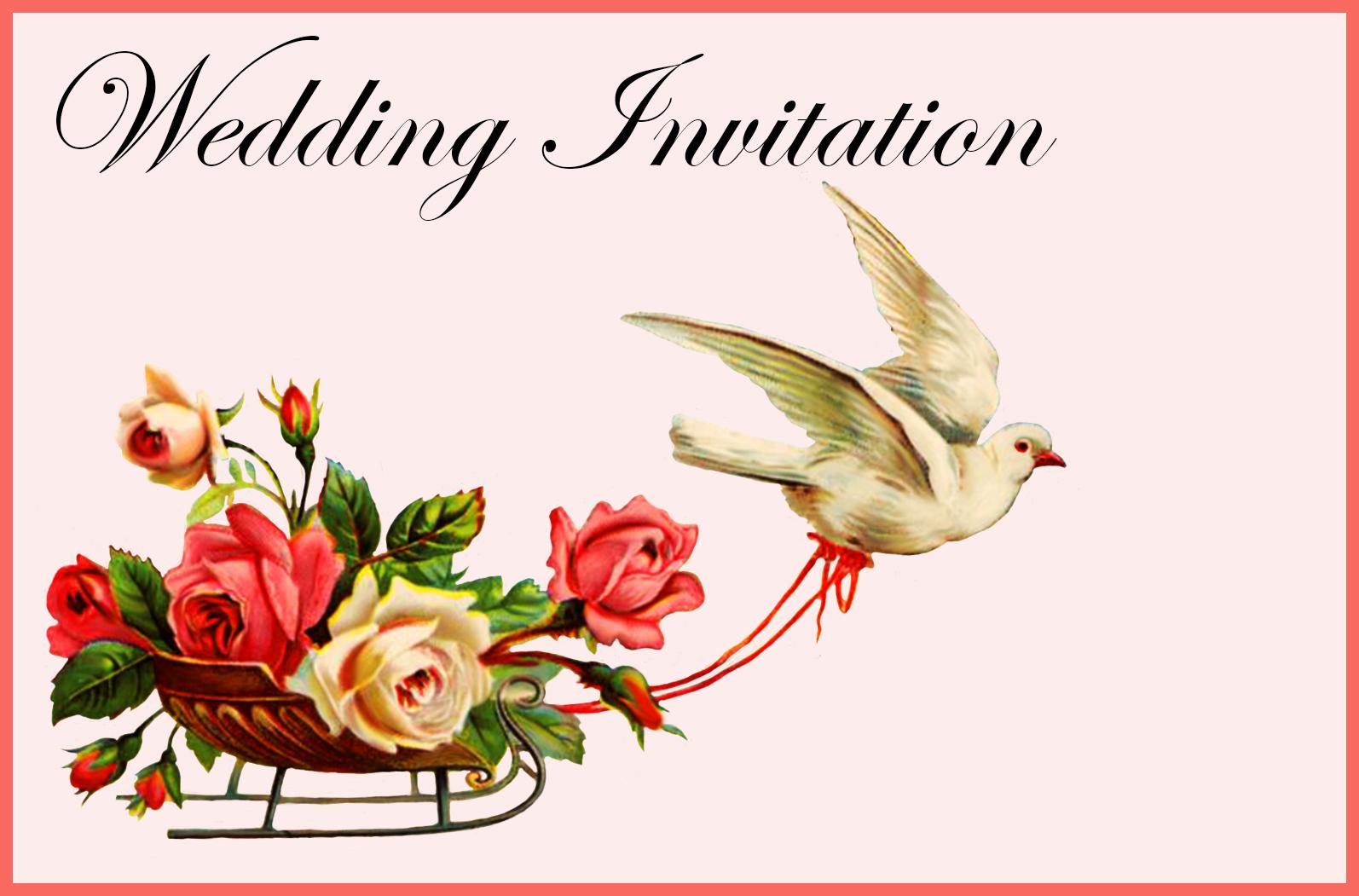 Wedding Invitation pink pigeon flowers