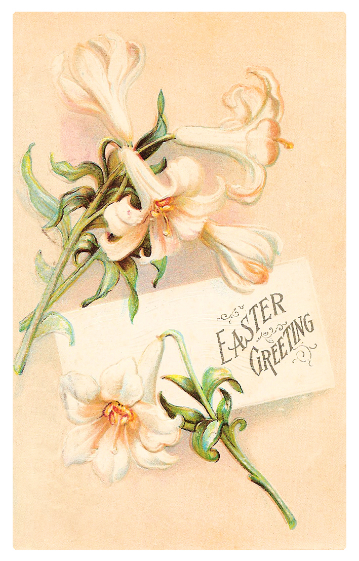 Easter card with white lillies