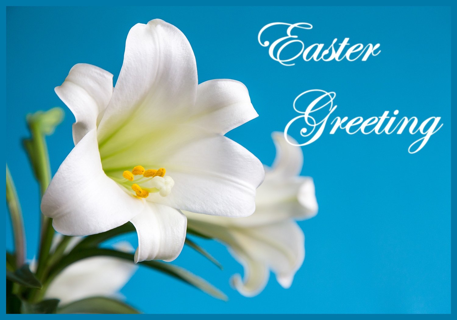 Free easter cards free printable greeting cards easter lilly greeting m4hsunfo