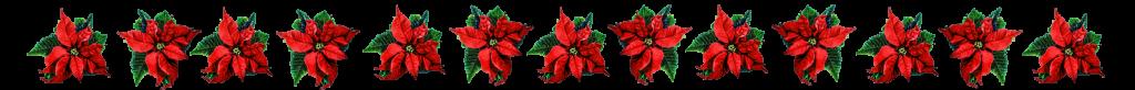 Border of Christmas flowers